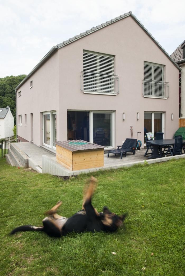 Maison en bois massive avec crepis Luxembourg